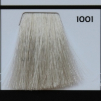 1001 Special Blonde  Ash Спец блонд пепельный