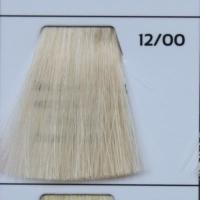 12/00 Ultra light blond natural экстра блонд натуральный