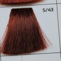 5/43 Light brown coppery-golden  светлый шатен медно-золотистый