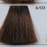6/03 Dark blond golden темно-русый золотистый