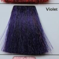 violet/фиолетовый 100 ml